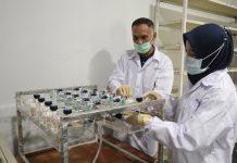 IDI Pusat Apresiasi Produk Eucalyptus Kementan
