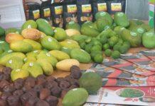 Kementan Dukung Perluasan Akses Pasar Internasional Ekspor Buah